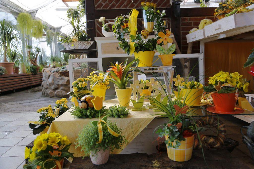 Gartenbau und Floristik Blumen Teipel Dolberg