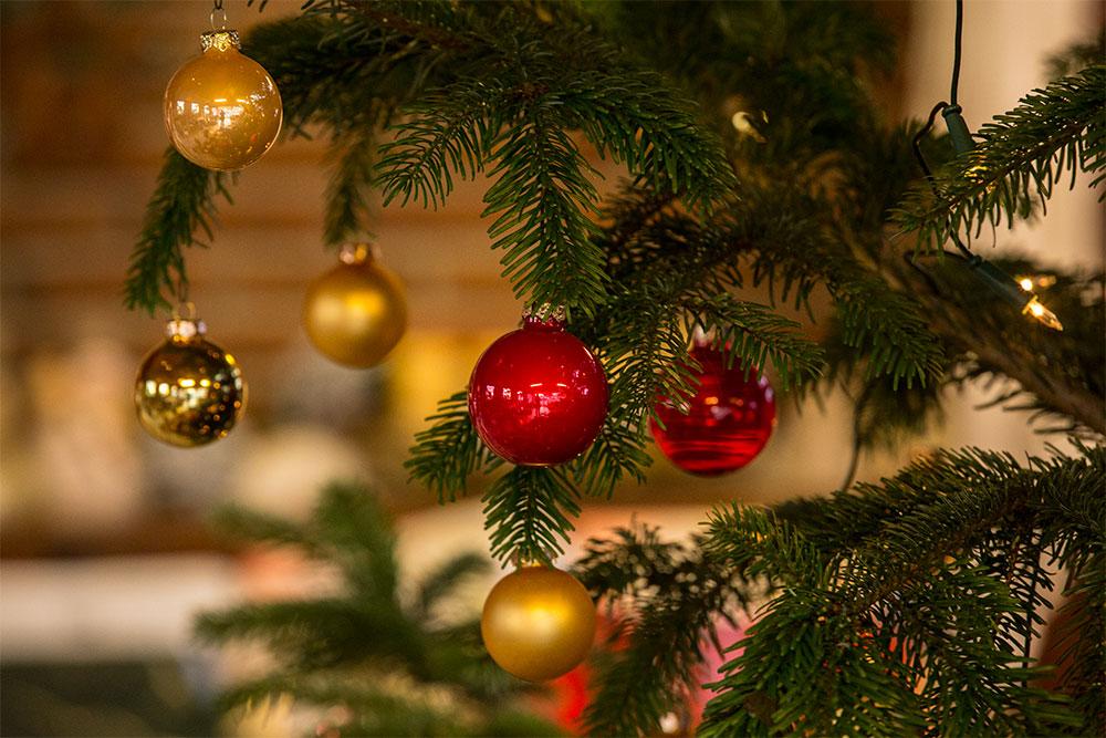 Gartenbau und Floristik Blumen Teipel Dolberg Weihnachtsbaumkugeln